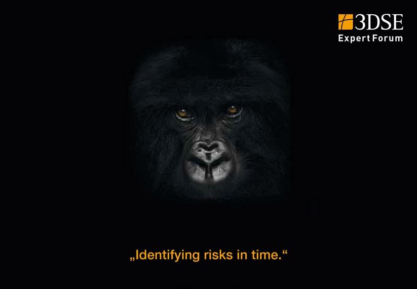 Expert Forum Risk Management 2013