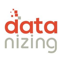 Logo datanizing